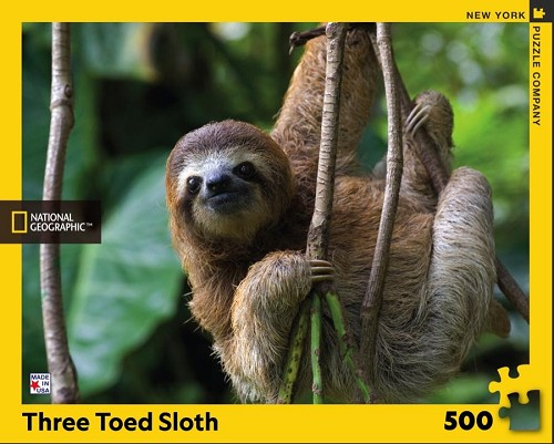 National Geographic Three Toed Sloth 500 Piece Puzzle